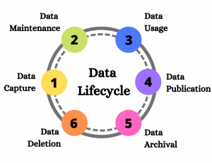 Data Lifecycle